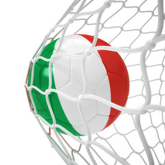 Italian soccer ball inside the net