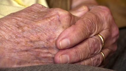 Senior old hands