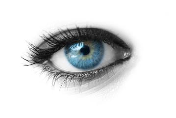 Beautiful blue eye isolated on white