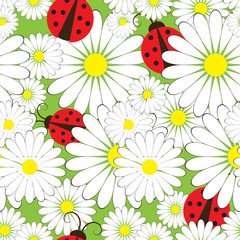 Seamless pattern with ladybirds and chamomile