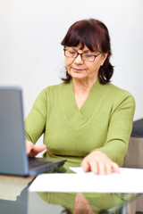 Nice senior woman sitting at the table with computer and papers