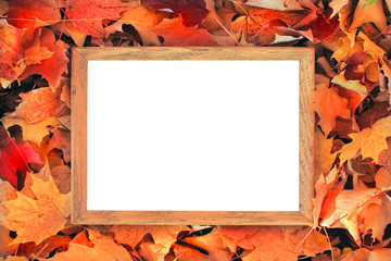 Leaves around frame