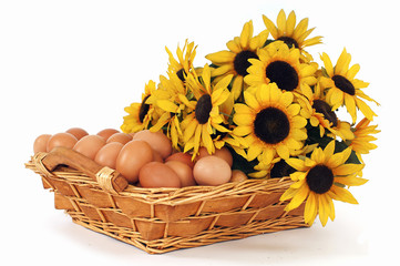 Basket filled with eggs and sunflowers on a white background.