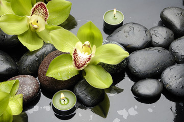 Aluminium Prints Spa therapy stones and orchid flower with water drops