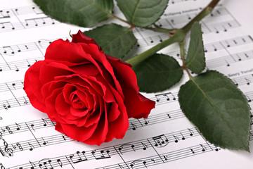 Obraz Symphony of love 2 - fototapety do salonu