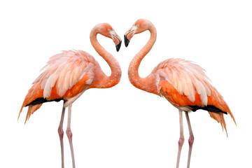 Foto op Canvas Flamingo Zwei Flamingos bilden eine Herzform