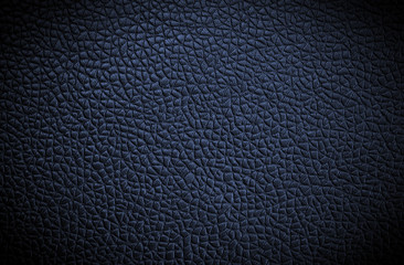 blue leather texture. Close up. .