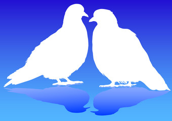 Doves on blue