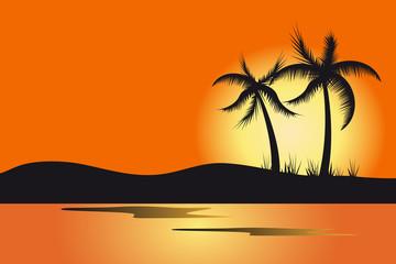 vector palms sunset