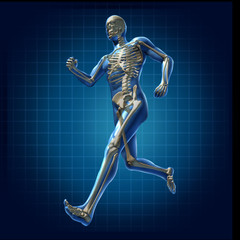 Human running man skeleton x-ray visual bone health