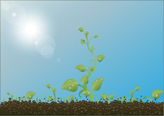 Green sprouts against the earth, the sky and the sun