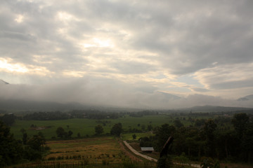 The Nature of PAI