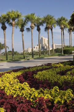 Entrance to Orlando World Center Marriott Florida