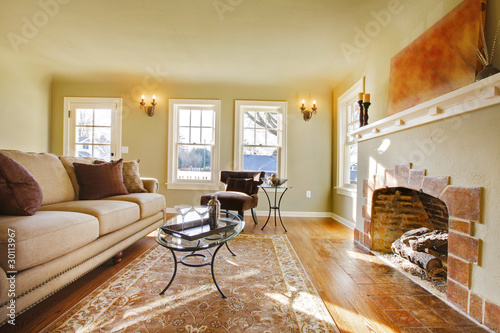 """Rooms: """"Beautiful Living Room With Fairy Tale Fireplace. Natural"""