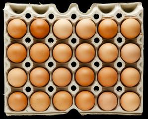 zwei dutzend braune hühner eier