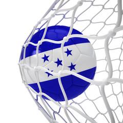 Honduranian soccer ball inside the net