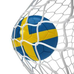 Swedish soccer ball inside the net