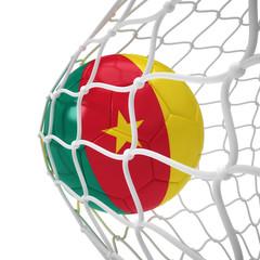 Cameroonian soccer ball inside the net