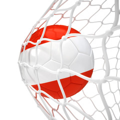 Austrian soccer ball inside the net