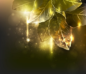gold leaves. vector illustration