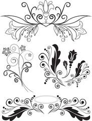 set of swirling flourishes decorative floral elements