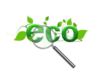 Atención a la ecología