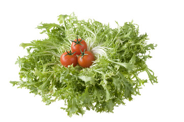 Isolated red tomatoes on green leaf lettuce