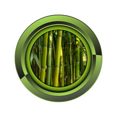 Wall Mural - bambou jardin jardinage plante plantation printemps bouton