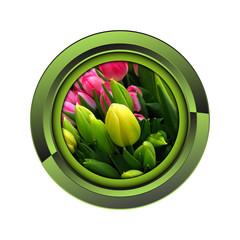 Wall Mural - tulipe jardin jardinage plante plantation printemps bouton