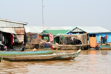 Kambo Life 2
