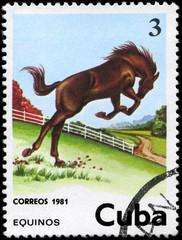 CUBA - CIRCA 1981 Horse 3c