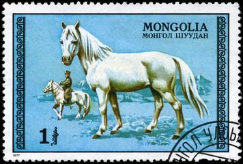 MONGOLIA - CIRCA 1977 White Stallion