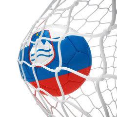 Slovenian soccer ball inside the net