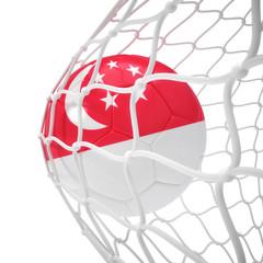 Singaporean soccer ball inside the net