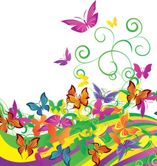 color butterflies on bright background