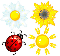 Set from a ladybird, the sun, a sunflower and chamomile.
