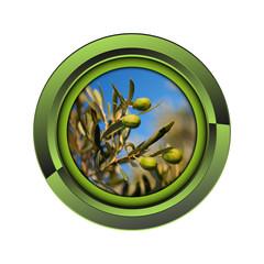 Wall Mural - olivier jardin jardinage plante plantation printemps bouton