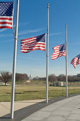 Row American Flags Flying Half Mast Washington DC
