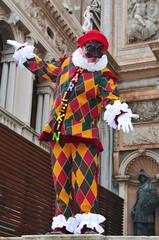 carnevale di venezia 659