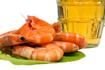 Fresh shrimp on lettuce leaf and a glass of beer
