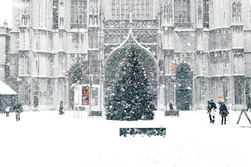 snowstorm in town