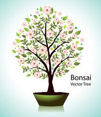 Beautiful vector blooming bonsai