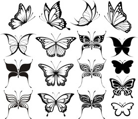 butterflies clipart fashionable