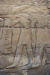 Anubis en bas-relief ;