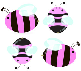 pink bees