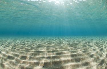 Ripples of sunlight reflected on the sandy ocean floor.