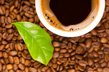 Cup of coffee and coffee beans with green leaf of coffee plant.
