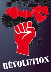 Revolutions_Afrique