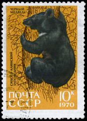 USSR - CIRCA 1970 Black Bear