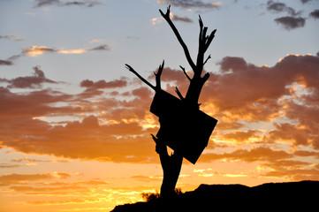 Sunrise at Outback, australia